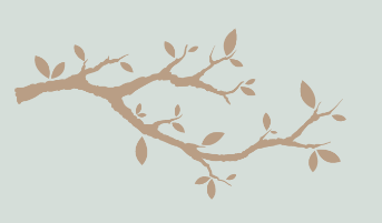 branchage.png